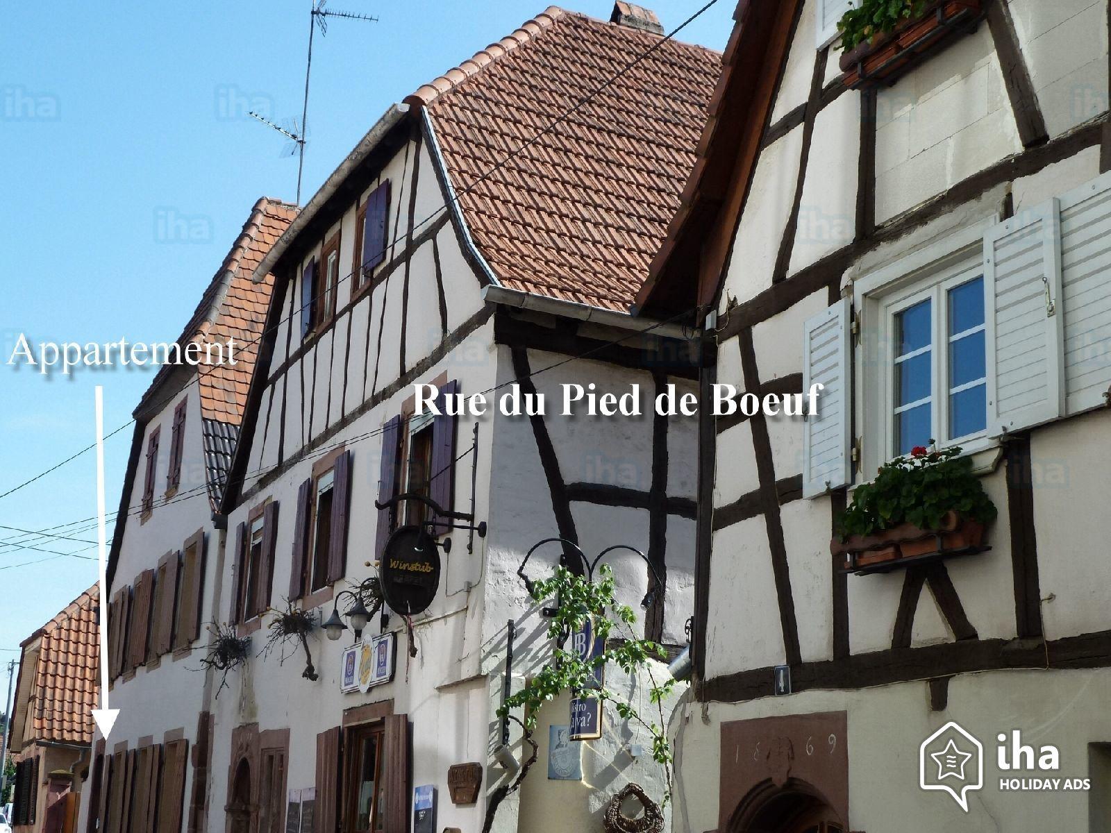location maison wissembourg