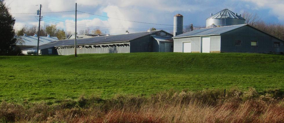vente propriete agricole 04