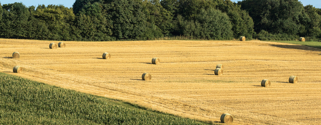 vente propriete agricole aveyron