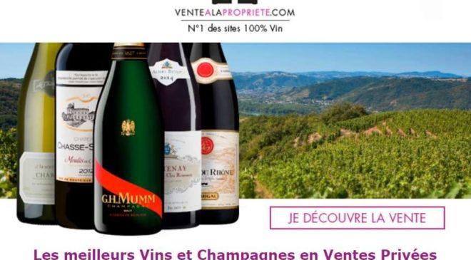 vente propriete vin