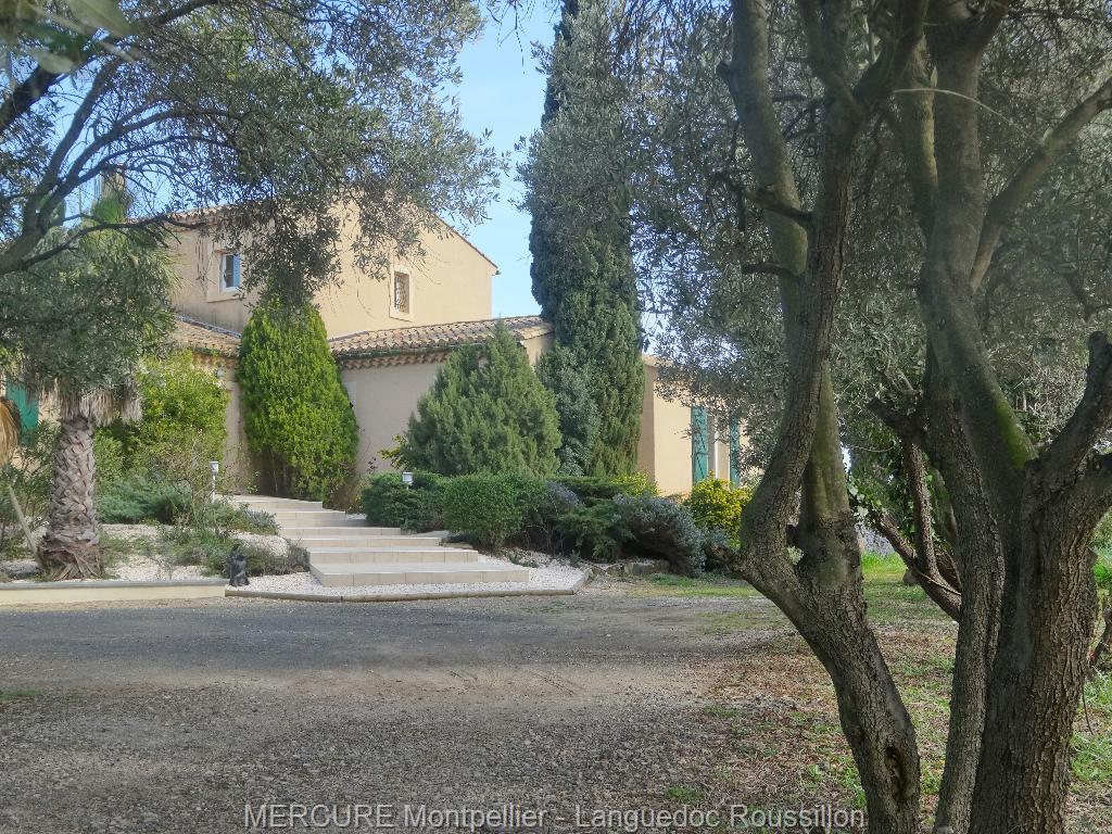 vente propriete viticole herault
